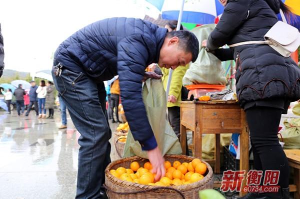 耒阳竹海冰糖橙采摘节启幕 吸引游客尽享鲜果