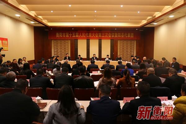 郑建新参加衡阳县、石鼓区两个代表团分组讨论