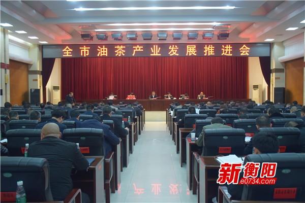 郑建新:切实坚定打造中国油茶第一强市的信心
