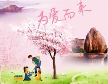 """南岳衡山景区将启动第二季""""我在寿岳有棵树""""活动"""