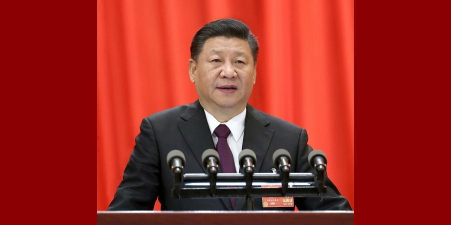 中央政治局同志向党中央和习近平总书记述职