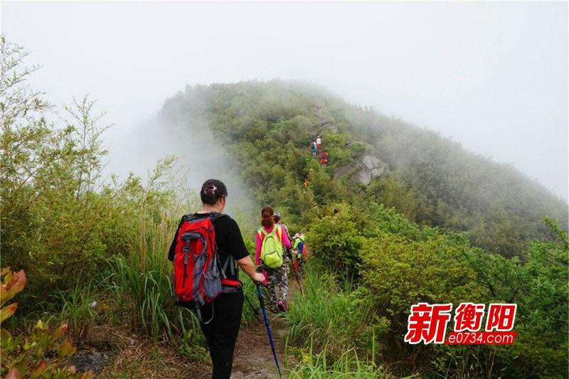 衡阳市网络志愿者赴衡山县岭坡乡宣传森林防火