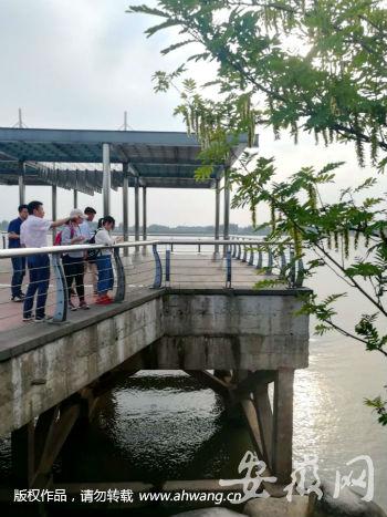 【美丽中国长江行】马鞍山:拆除82家非法码头 保护长江岸线生态
