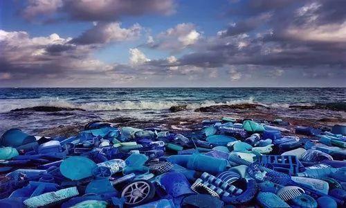 向塑料污染宣战:海洋中塑料与浮游生物比例达1:2