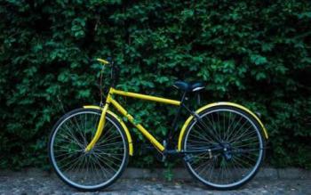 倡导低碳环保出行 共享单车首次成为湖南公务用车
