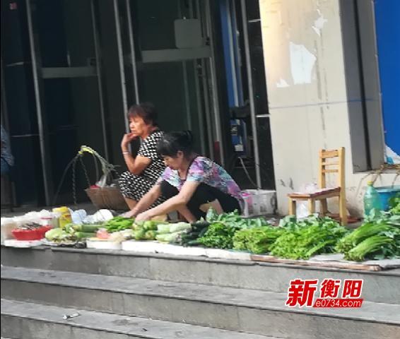 衡阳持续高温蔬菜瓜果减产  部分蔬菜价格略上涨