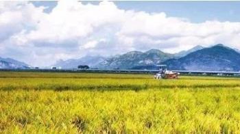 湖南日报社论(五):着力推进农业现代化