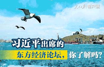 习近平即将出席的东方经济论坛,你了解吗?一图看懂