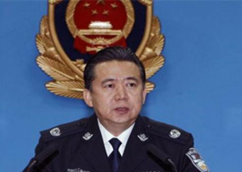 公安部党委:坚决拥护对孟宏伟受贿进行监察调查图片
