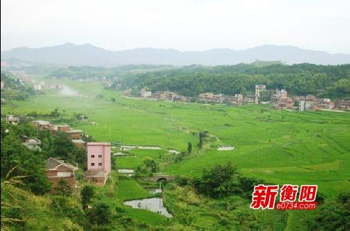 衡阳县井头镇17位驻村工作队长述职畅谈扶贫心得