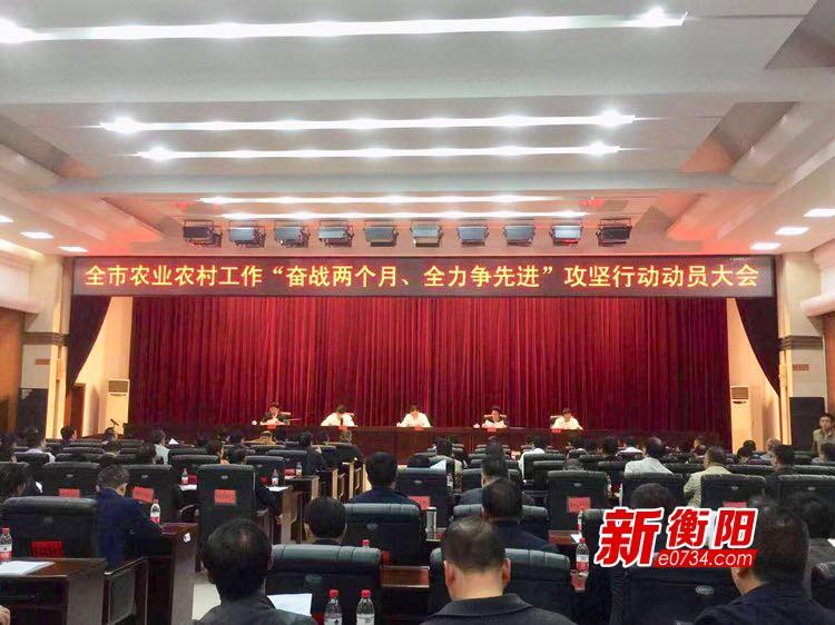 """衡阳农业农村工作动员会:突出""""四重""""抓推进"""