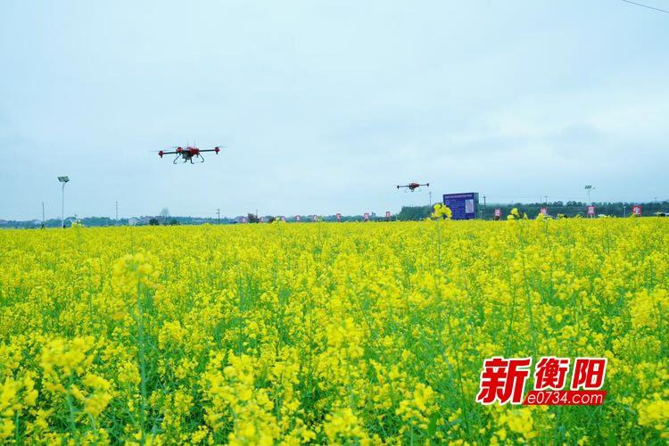 衡阳正青春:农业农村工作成就新闻发布会答记者问