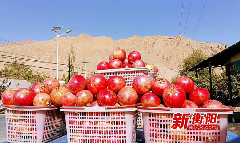 @衡阳人!期待已久的吐鲁番特色年货节28日来衡