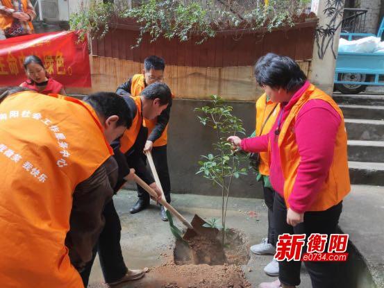 植树添绿:向阳社区志愿者植绿护绿 美化家园