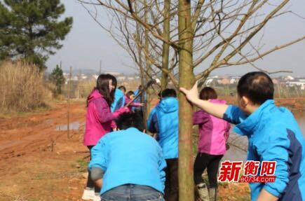 植树添绿:依田湖畔春光美 衡山萱洲志愿者植树忙