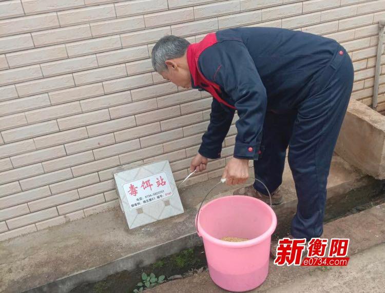 消灭鼠患  衡山县全面开展春季病媒生物防治活动