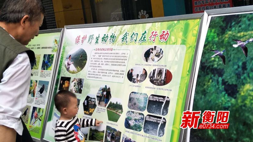 湖南环境生物职业技术学院举办科技宣传活动