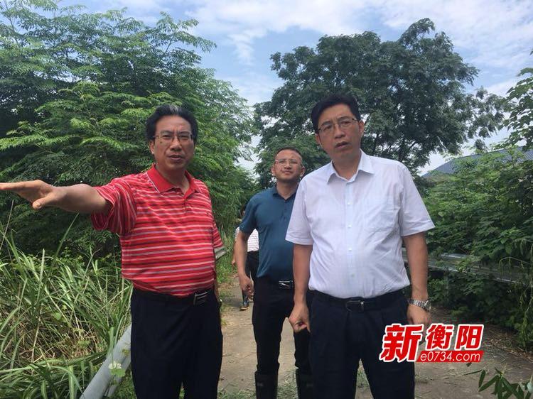 邓群策深入衡东石湾、霞流镇检查指导抗洪救灾工作