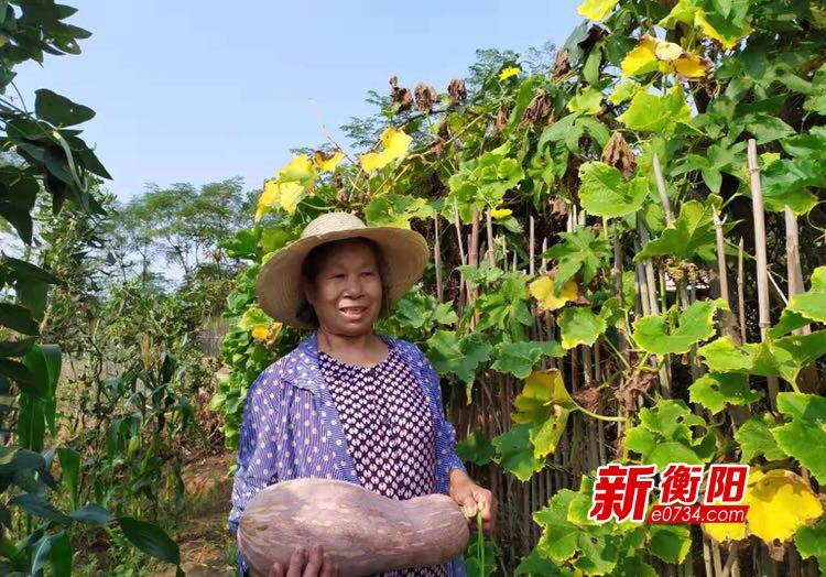 暖心!常寧結對扶貧干部幫助貧困戶銷售蔬菜助脫貧