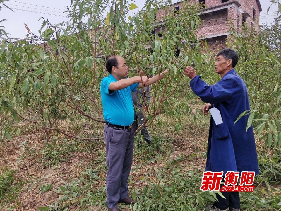 """农技专家假期上门给贫困户传授果树种植""""秘籍"""""""