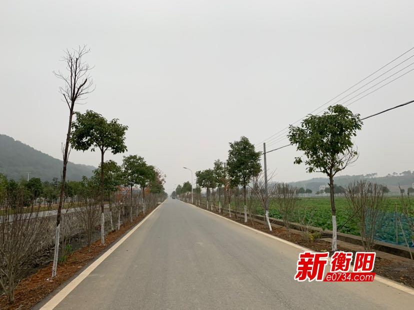 建设美丽宜居乡村:衡阳高质量推进农村人居环境整治