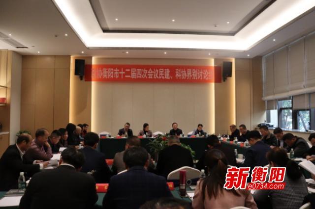 """谋发展聚力量 衡阳市政协委员分组讨论""""两个报告"""""""
