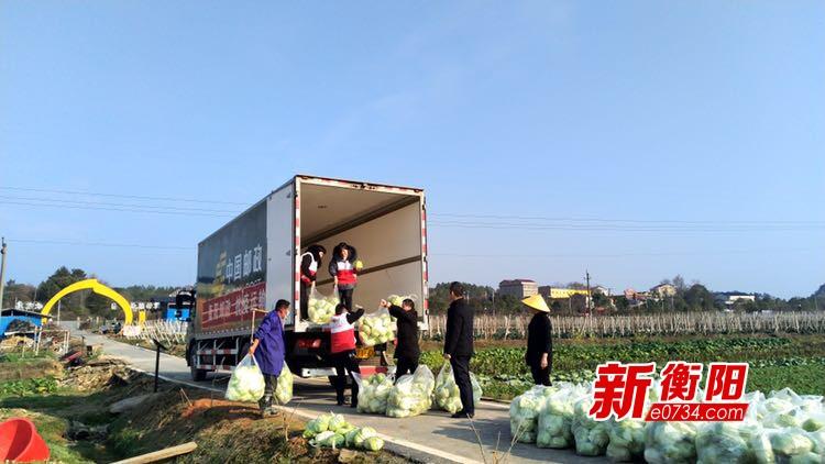 疫情防控·衡阳在行动:衡东爱心企业捐赠10吨蔬菜
