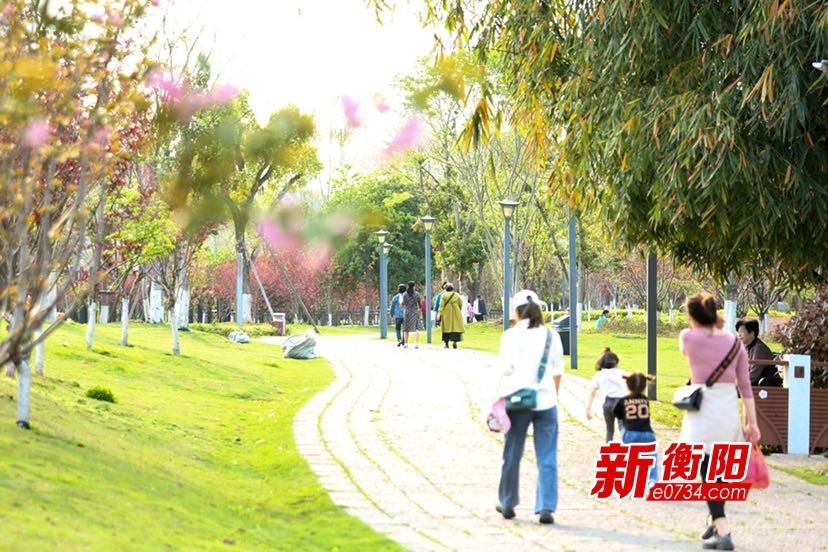 春雨過后 衡陽東洲島景區春意正濃 吸引游客無數踏青賞花