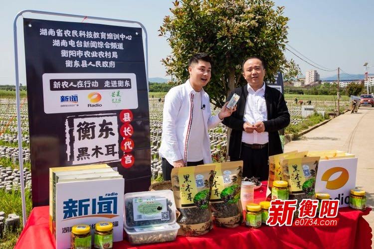 """""""我为农产品代言""""衡东县长直播带货 黑木耳线上火爆热销"""