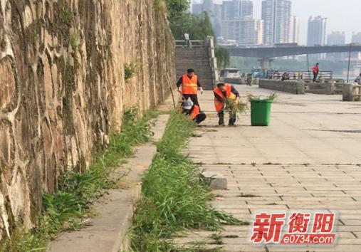 """人民街道湘北社区开展保护母亲河""""清洁河岸""""活动"""