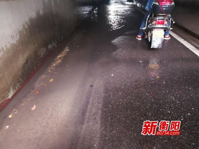 """向不文明行为说""""不"""":东风路立交桥下积水严重"""