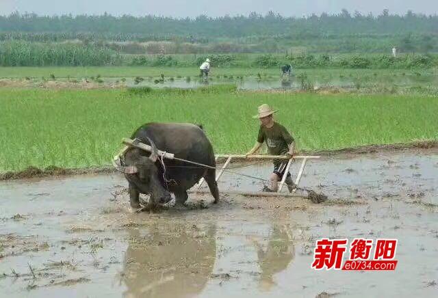 五一小长假:劳动者在汗水中收获着自己的幸福