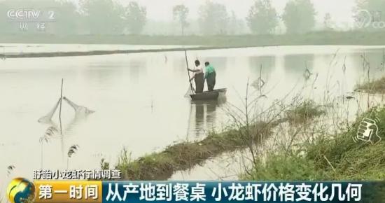 小龙虾价涨销量升 养殖地:500多斤赚五、六千元