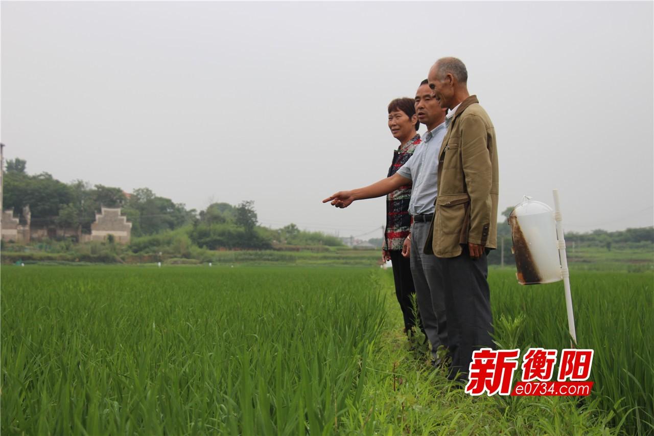 """记者回访白水村:李克强总理与农民的""""田间25分钟"""""""