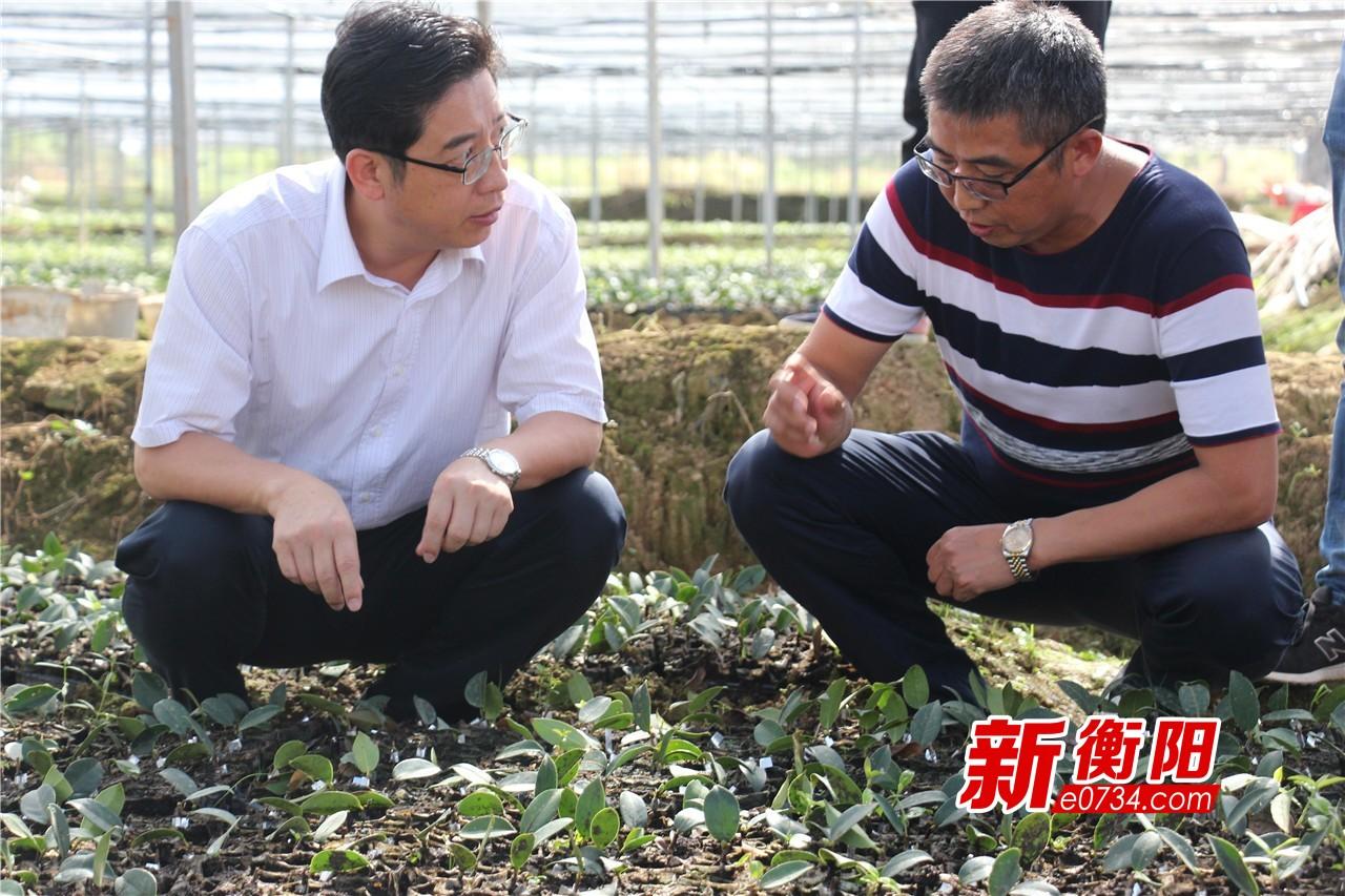 邓群策赴衡南调研脱贫攻坚、环保整治、防汛抗旱