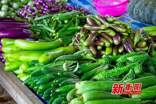 """持续阴雨致蔬菜价格上涨 本地菜渴望""""流浪的太阳"""""""