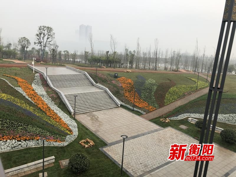 """""""衡马""""倒计时:滨江新区""""妆点""""5600平米绿化带"""