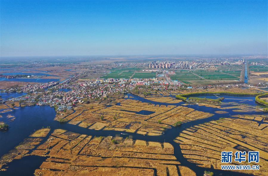 新华网评:用奋斗给未来之城添砖加瓦