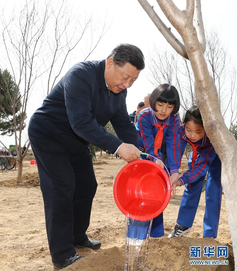 新华网评:共绘美丽中国绿色画卷