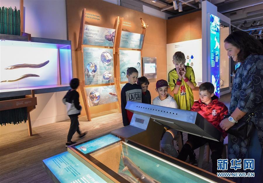 新西蘭國家博物館自然館重新開放