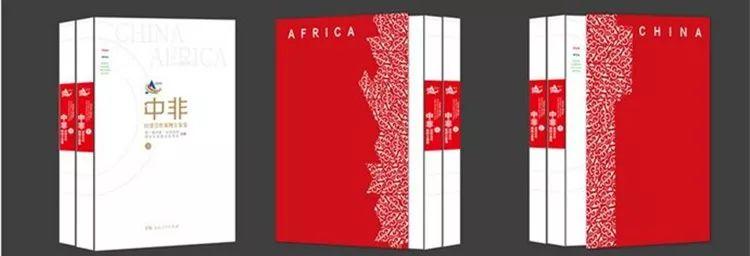 中国助力非洲发展的101个案例方?#31119;?#35265;证中非命运共同体的活化石