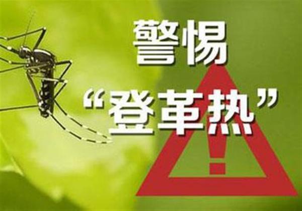 夏季流行病健康教育宣傳一:炎炎夏日,防控傳染病第一招----認識和預防登革熱