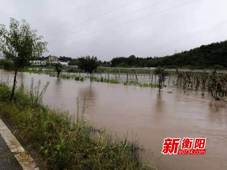 汛情快报:蒸湘区雨母山镇7村受灾 无人员伤亡