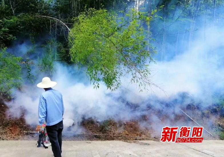 祁东县出现竹蝗危害情况 县林业局防治及时显成效