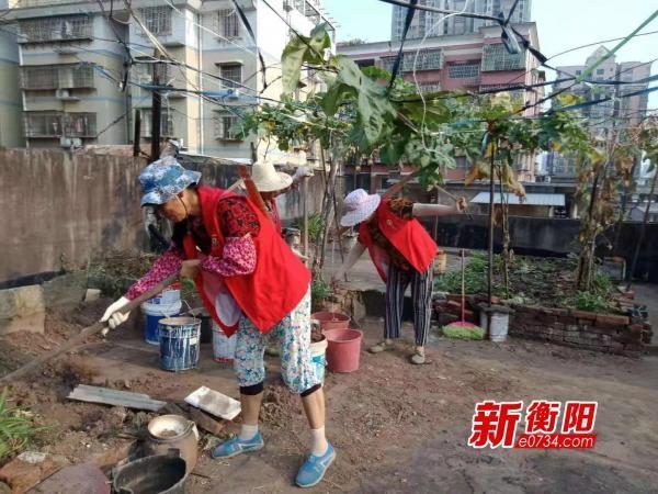 """""""衡阳群众""""在行动:湘北社区集中整治楼顶小菜园"""