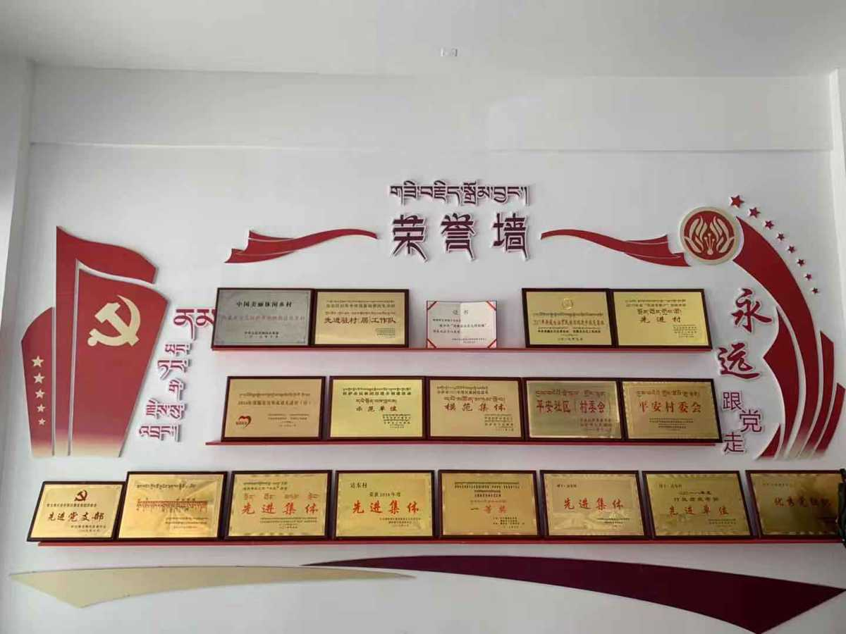 """西藏达东村:基层党建引领 乡村振兴有了强""""车头"""""""