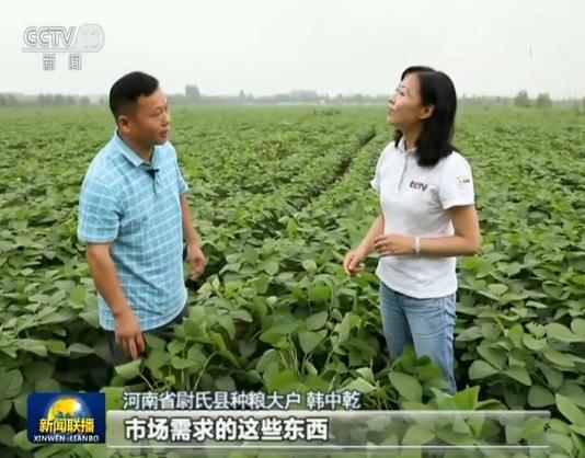 【在习近平新时代中国特色社会主义思想指引下——新时代 新作为 新篇章】优化结构 推进粮食生产绿色发展