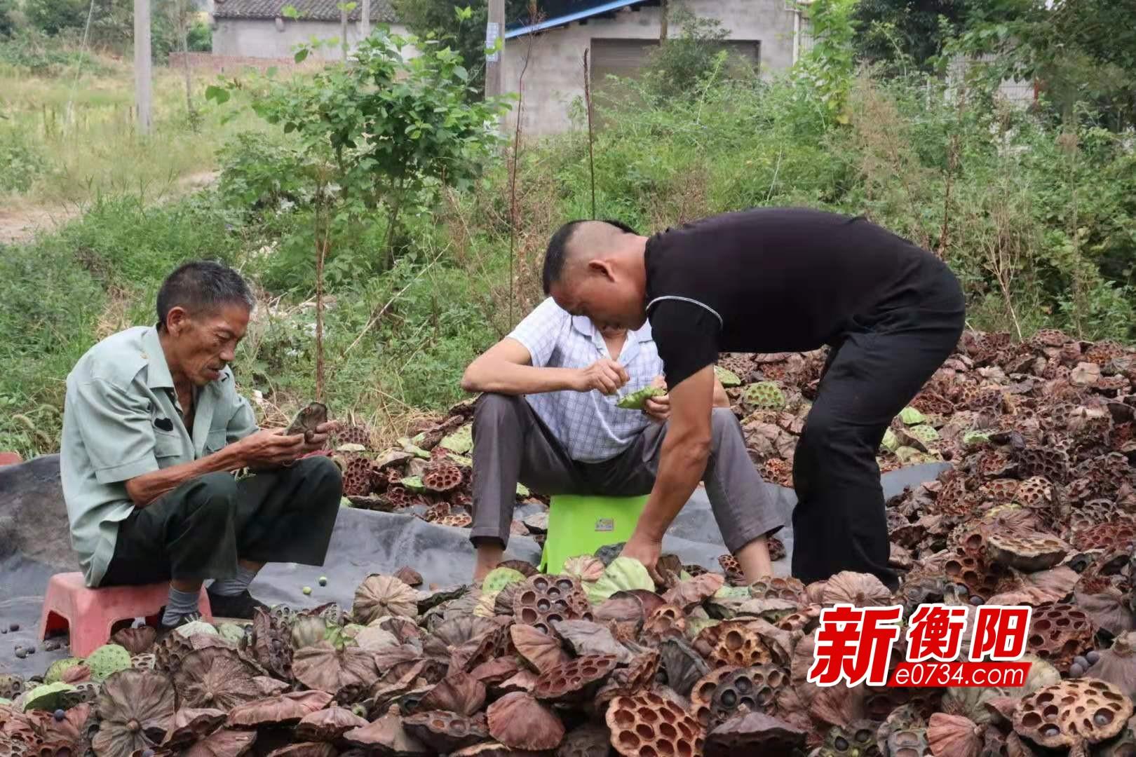 """奋斗新时代 一个不能少:刘香保甘愿""""吃亏""""助脱贫"""