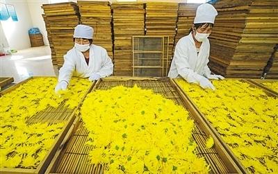 没有任何力量能够阻挡中国的前进步伐