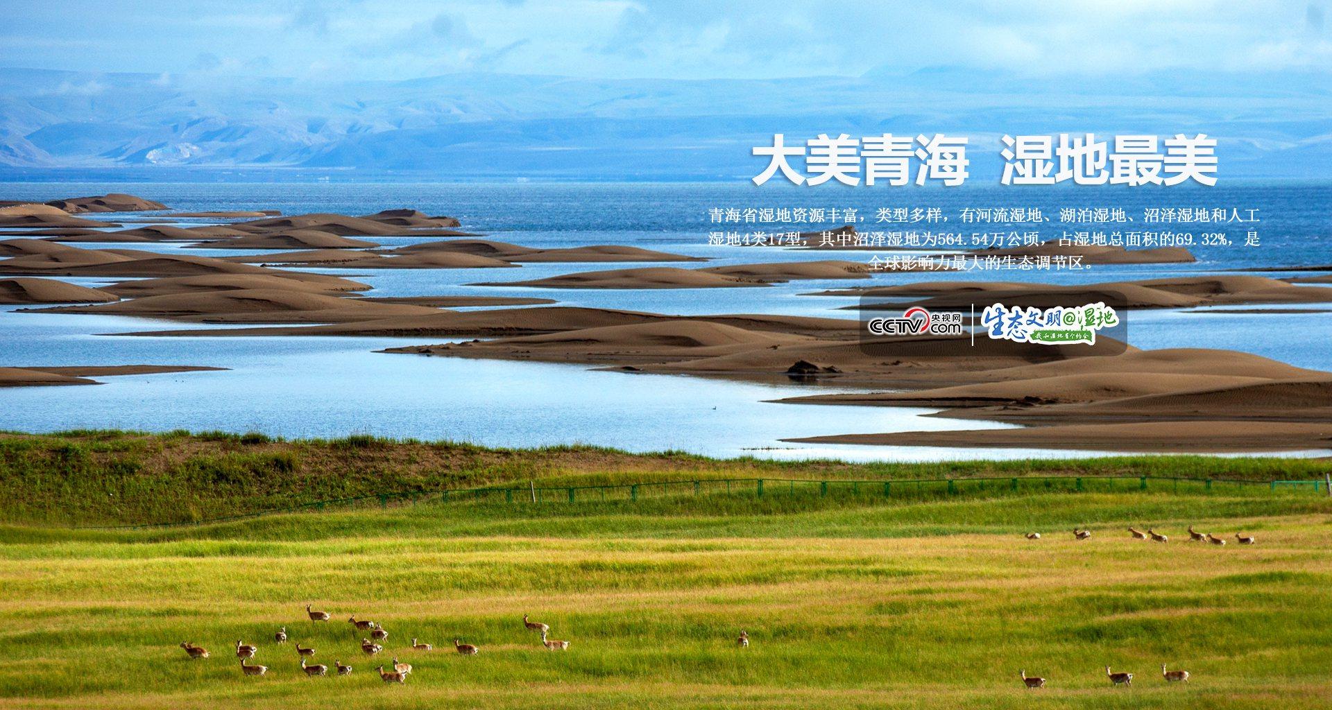 【生態文明@濕地】大美青海 最美濕地